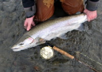 Chad Black Skeena River Fly Fishing Steelhead