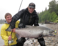 62-pound Chinook (King) Salmon landed on the Kitimat River on June 12, 2010