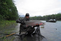 "Mr. Hak with a 40 inch ""plus"" Skeena Steelhead"