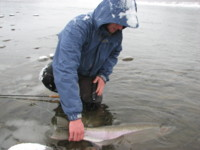 Sky Richards winter fly fishing Steelhead